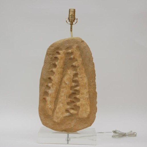 Sculptural Fossil Stone Lamp
